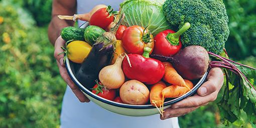 Schale mit Gemüse aller Art